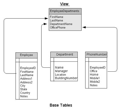 Figure 1. Using a view to access database information.