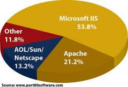 IIS Rules the Fortune 1000 Pie Chart